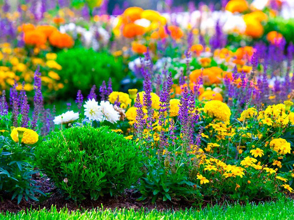 Aménagement paysager: pensez à toutes les saisons.
