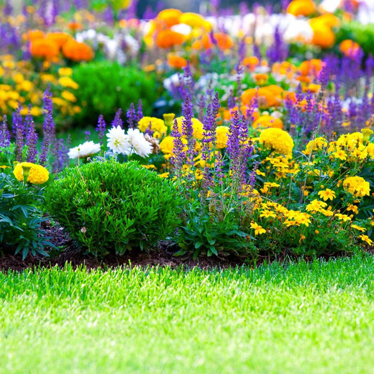 Aménagement paysager : pensez à toutes les saisons.