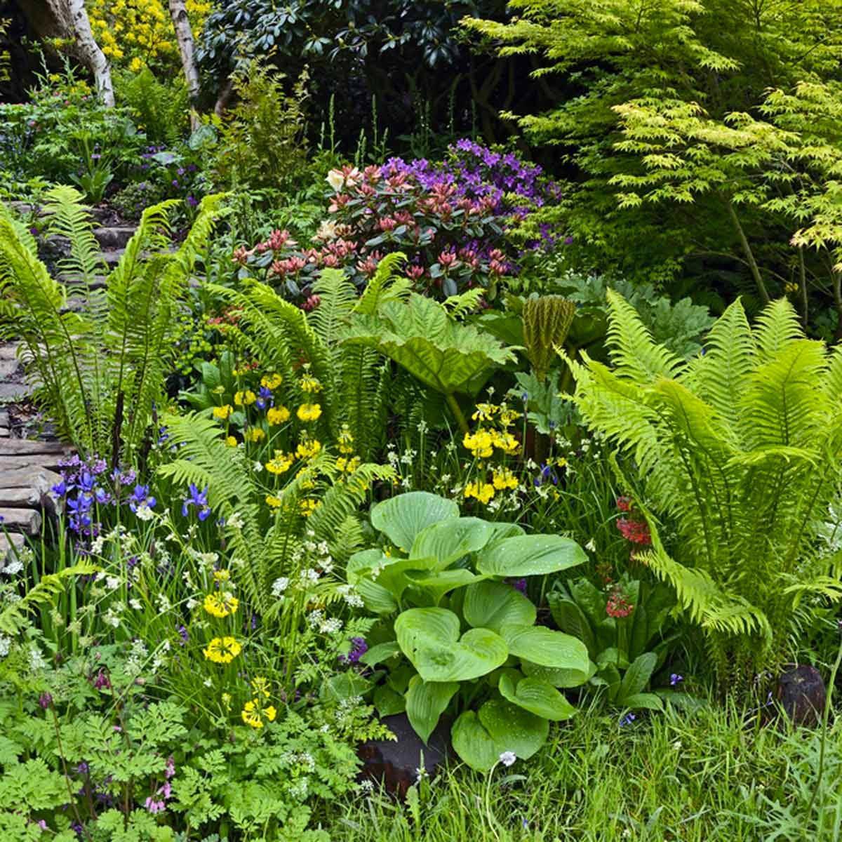 Aménagement paysager : variez les formes et les textures des plantes.