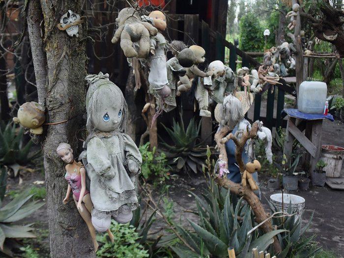 L'île des poupées est l'une des forêts hantées du monde.