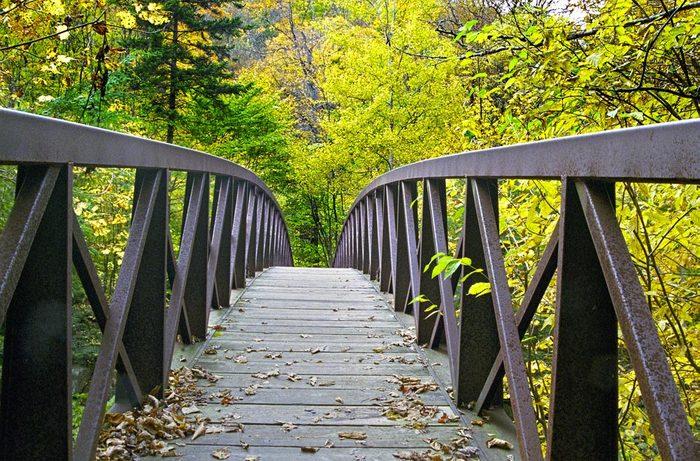 Forêts hantées : le « Long Trail », Bennington, Vermont.