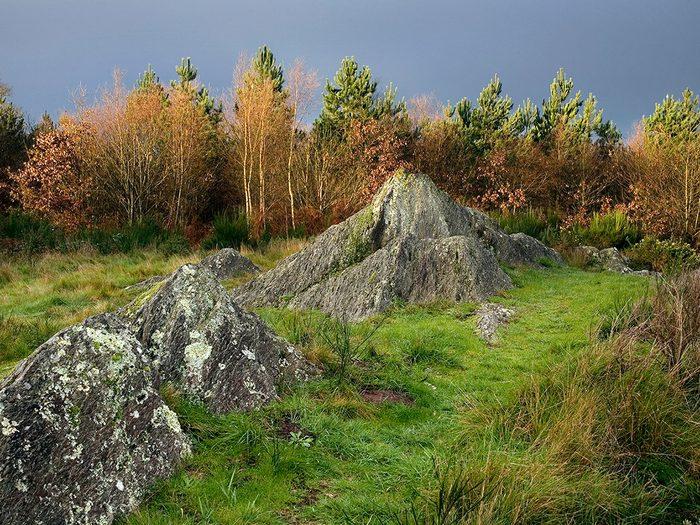 Dans le parc national Tawau Hills se trouve l'une des forêts hantées du monde.