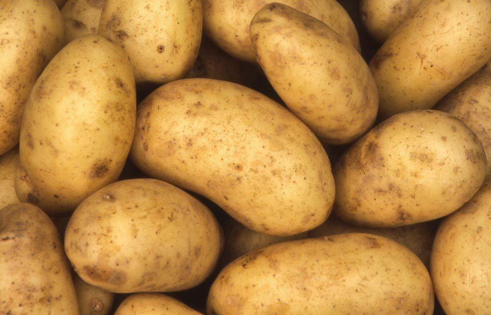Garde manger : les pommes de terre se conservent environ 2 mois.