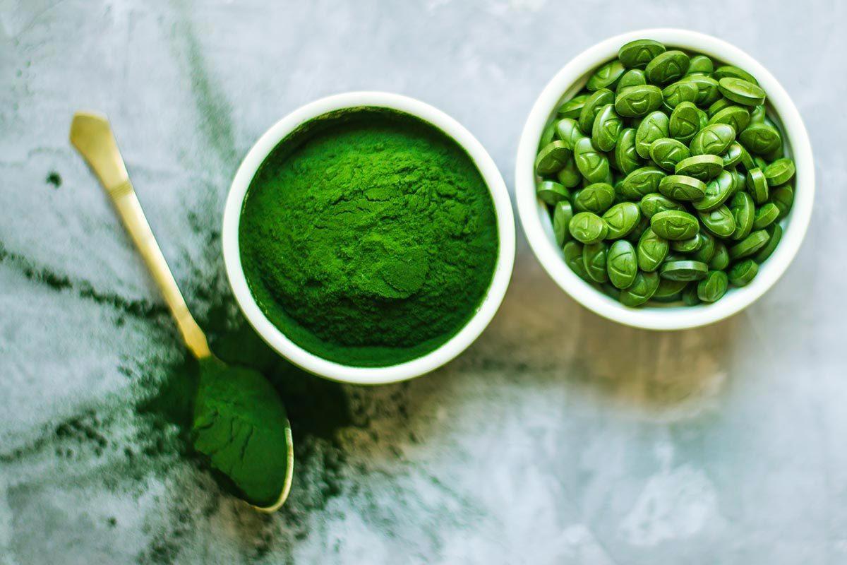Source de protéines végétales : la spiruline.