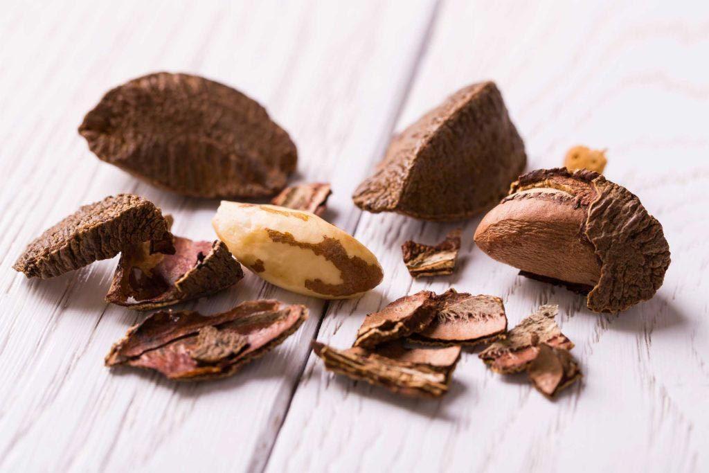 Source de protéines végétales : les noix du brésil.