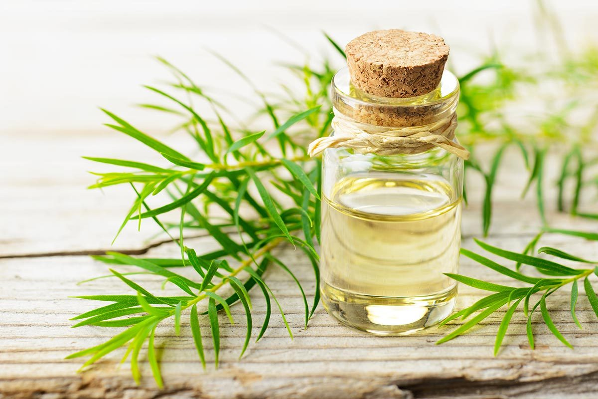 Pour combattre l'acné, utilisez de l'huile d'arbre à thé.