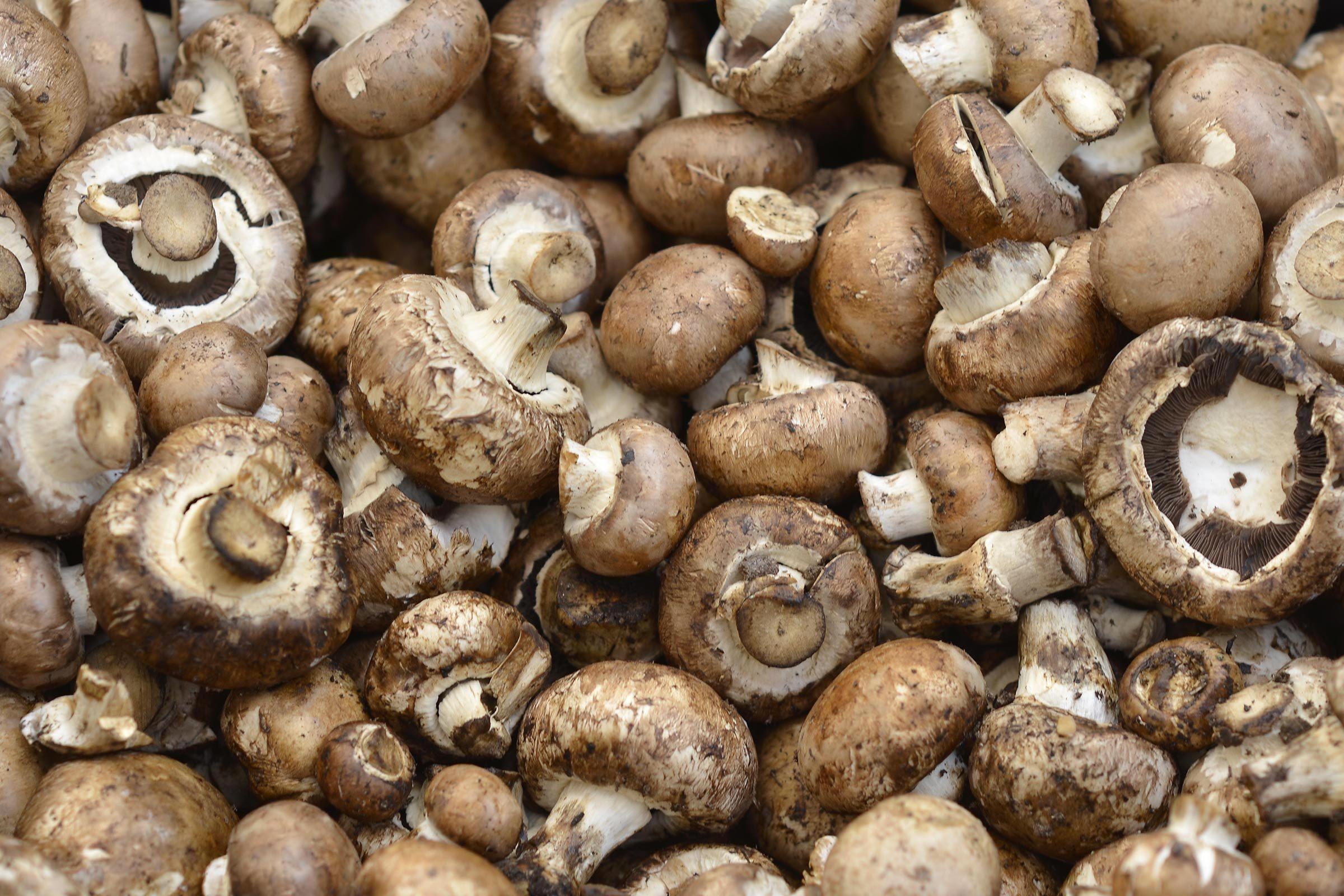 Aliments au barbecue : les champignons.