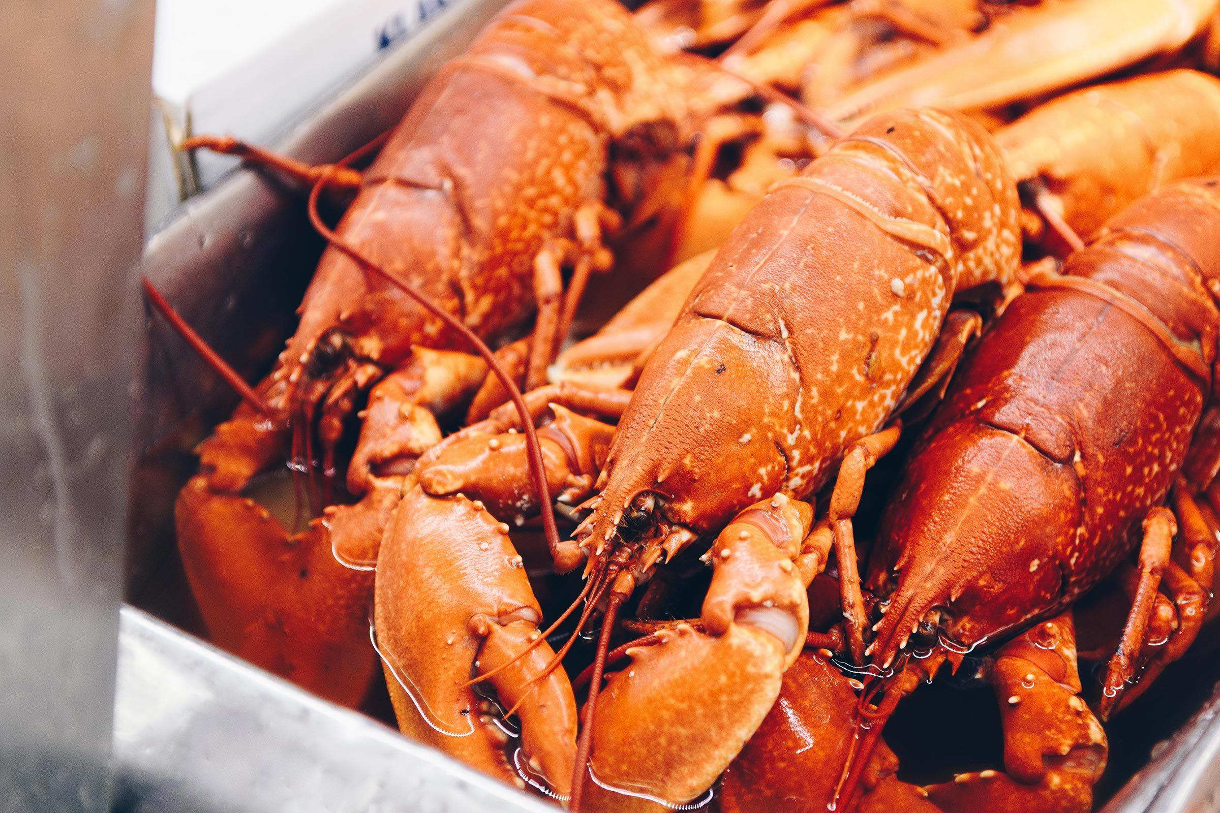 Aliments au barbecue : du homard.