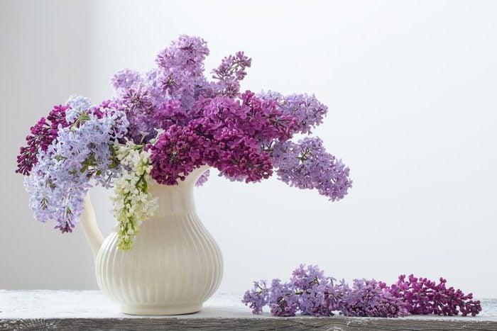 Couleurs de roses et autres fleurs : le lilas pour l'engagement et la simplicité.