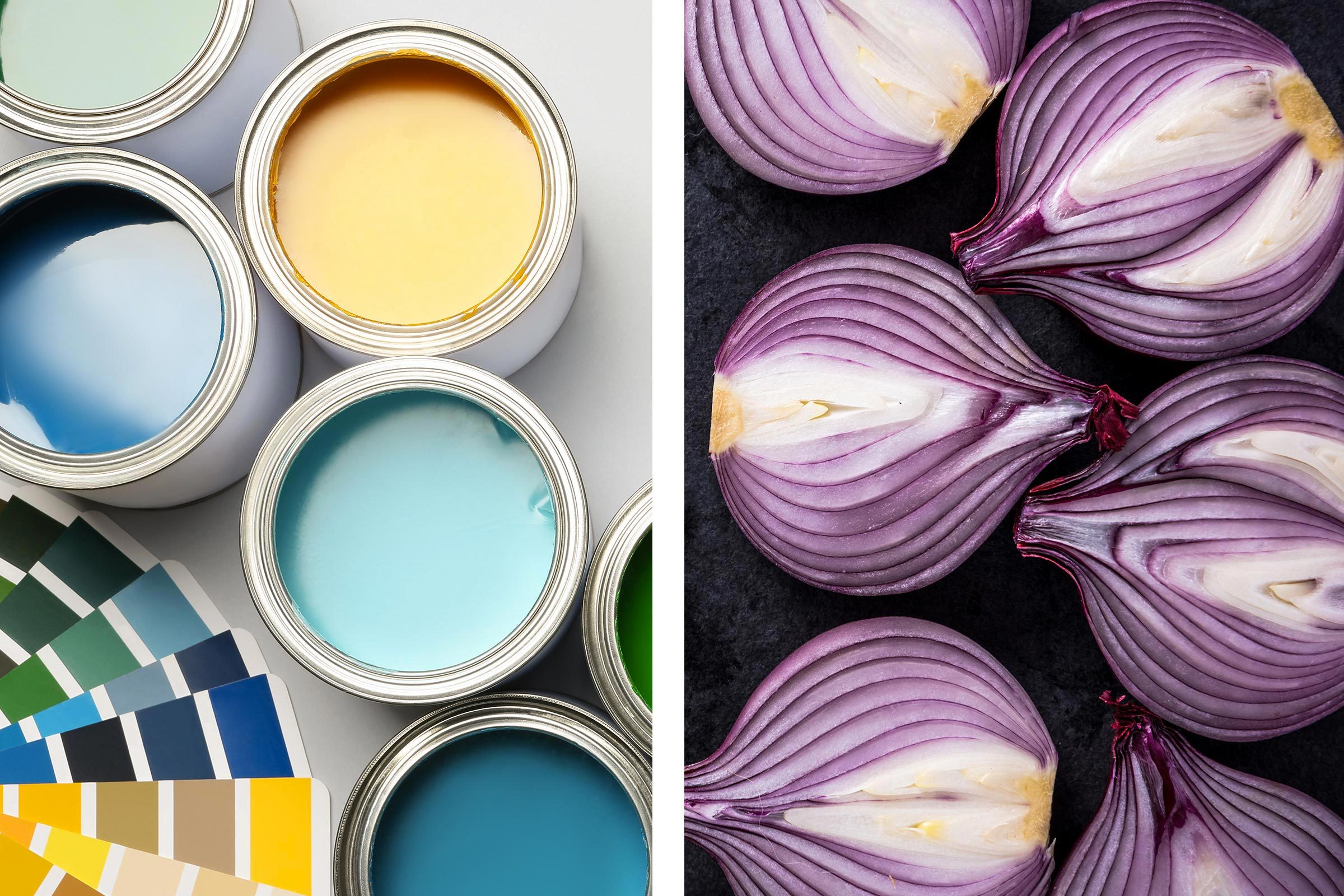 Avec un oignon, éliminez les odeurs de peinture fraîche.