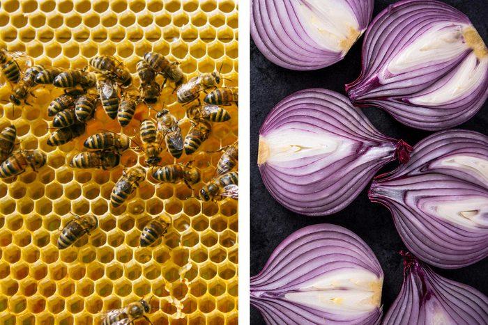 Avec un oignon, soulagez les piqûres d'abeille.