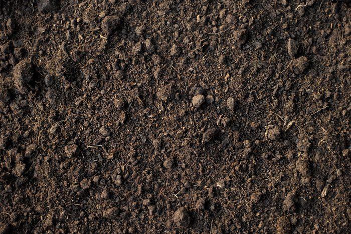 Production de papier : la déforestation cause l'érosion des sols.