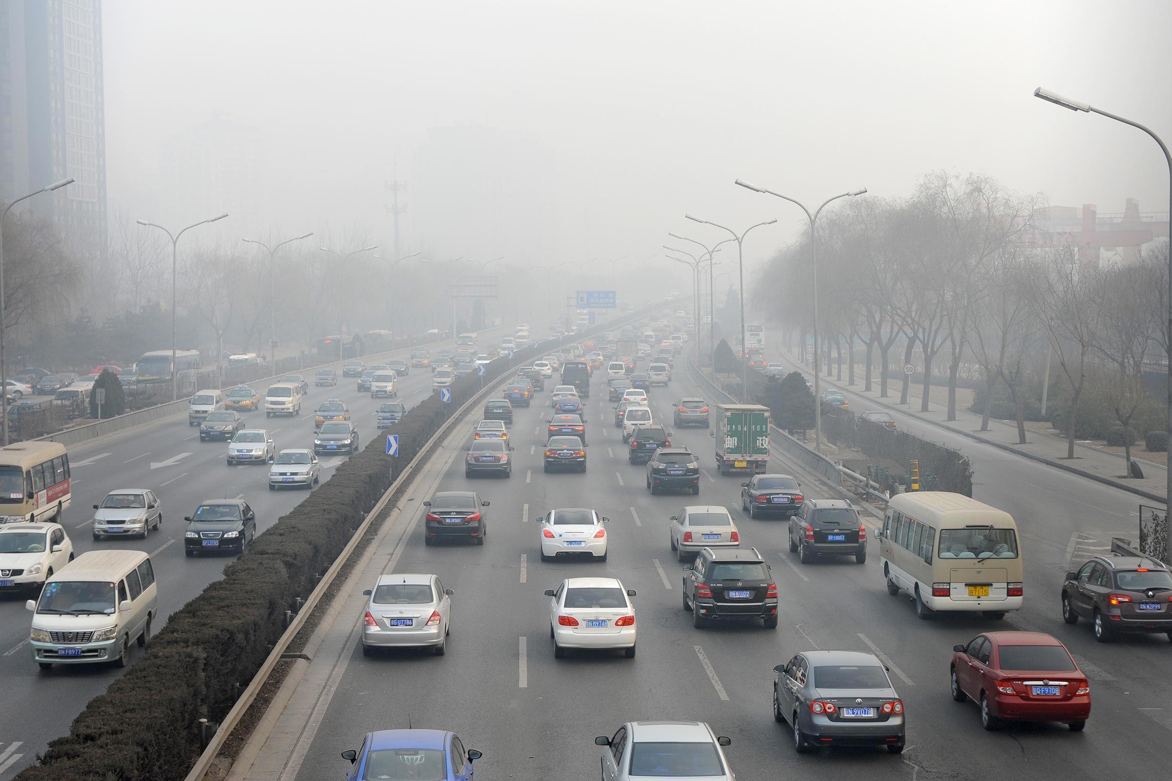 Utilisation de papier : la disparition des arbres affecte la qualité de l'air.