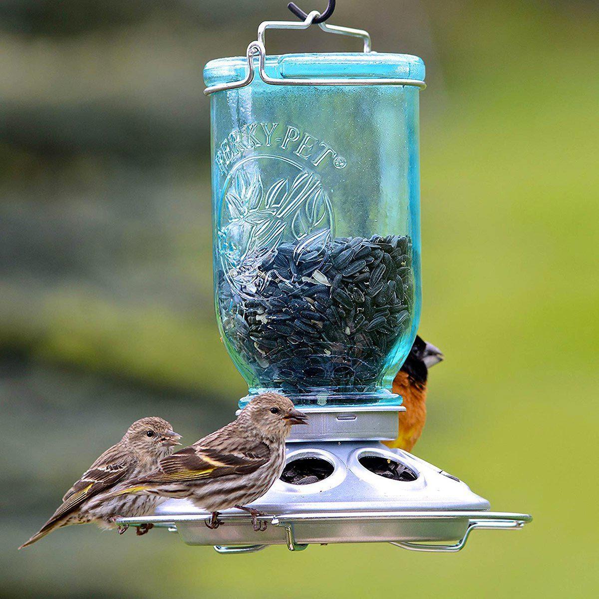 Sauver la planète : créez une mangeoire pour oiseaux à l'aide de pots Mason.