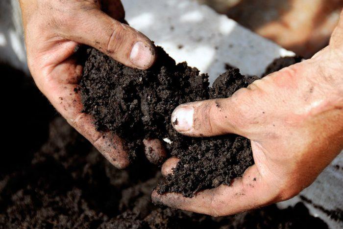 Le vinaigre blanc est également utile en jardinage.
