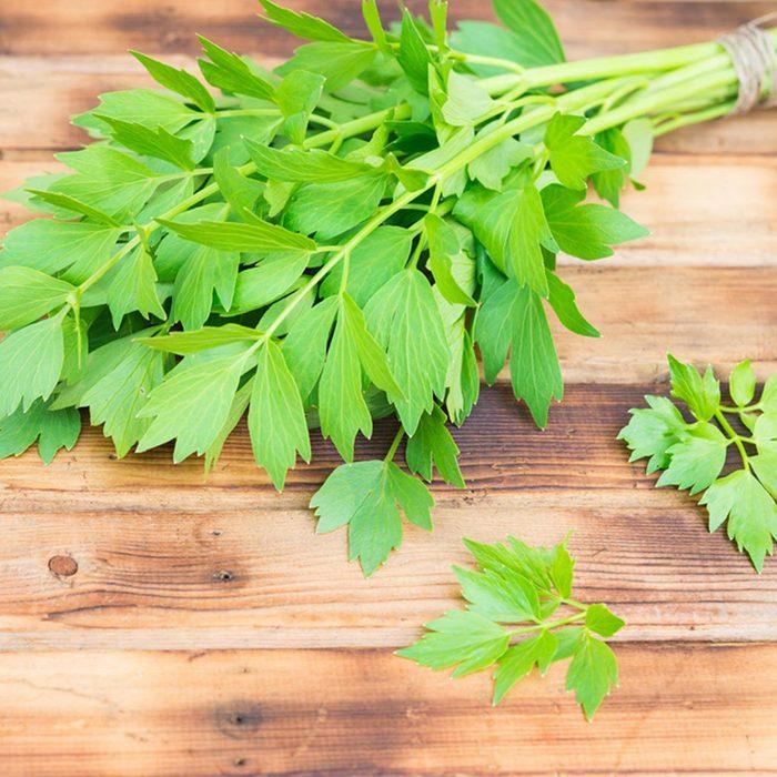 Les feuilles de céleri ne doivent pas être considérées comme des déchets alimentaires.