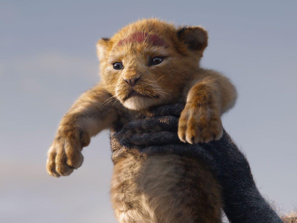 Le Roi Lion : un film à voir