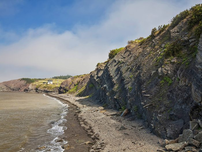 Voyage dans les Maritimes: visiter les falaises fossilifères de Joggins en Nouvelle-Écosse.