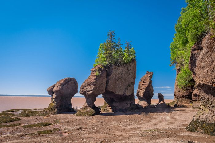Voyage dans les Maritimes: les rochers Hopewell au Nouveau-Brunswick.