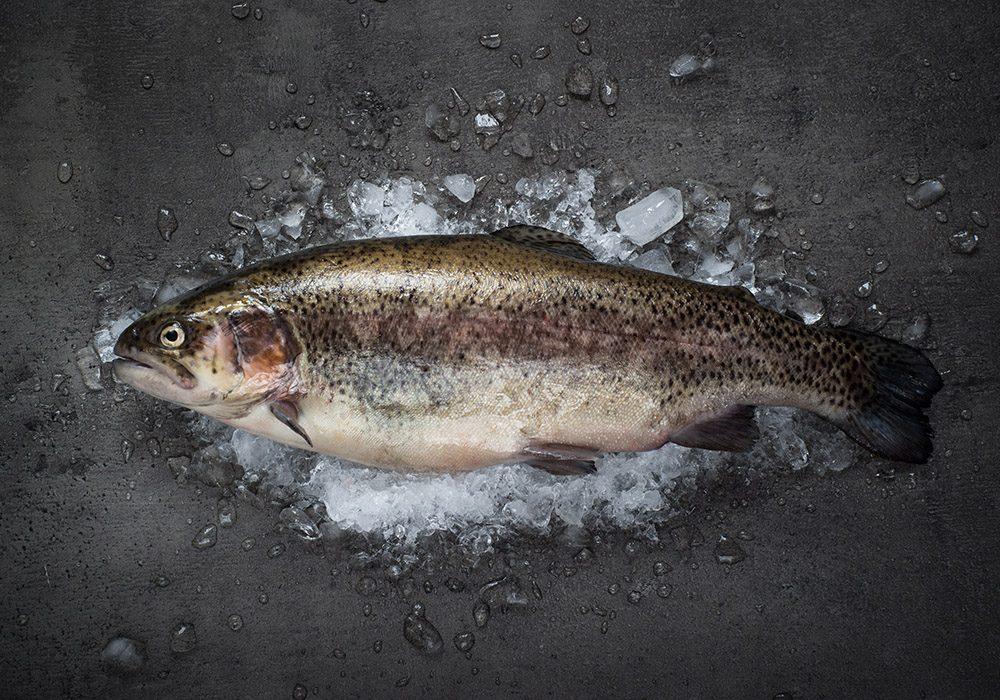 Il n'est pas nécessaire d'acheter votre poisson au rayon des produits bio.