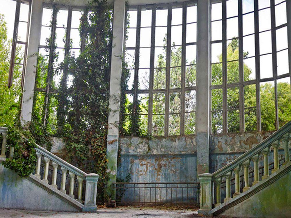 Cette maison abandonnée envahie par les plantes aurait bien besoin d'être restaurée.