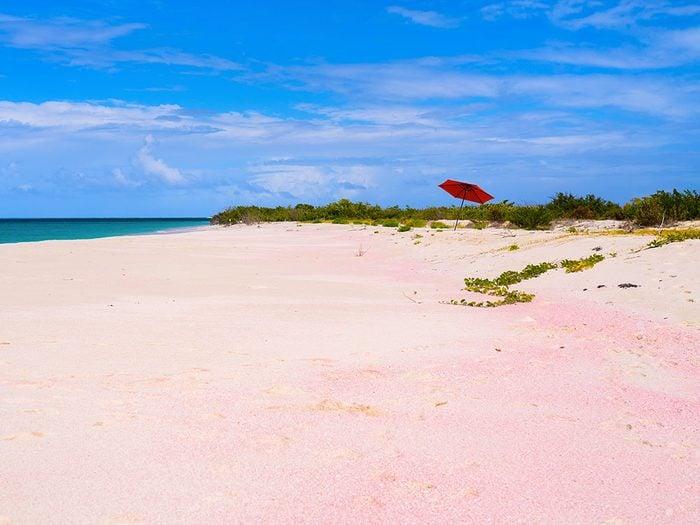 La plage de Low Bay à Barbuda est une des plus belles plages du monde.