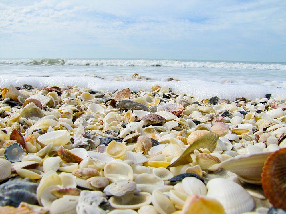 La plage de Somerset Creek aux Bahamas est une des plus belles plages du monde.