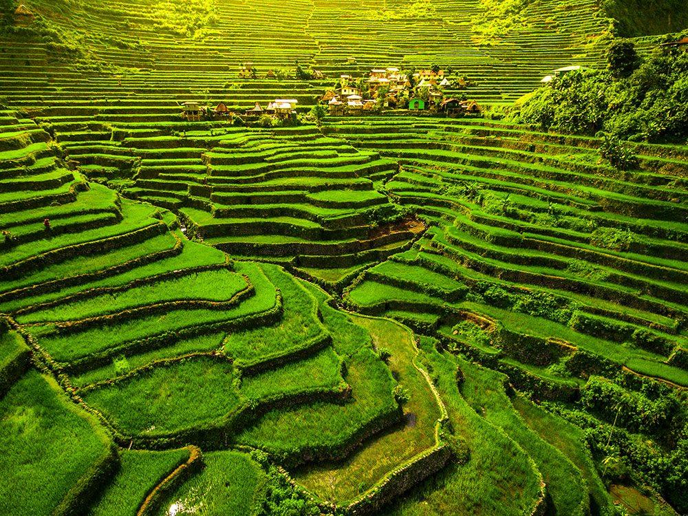 Les rizières en terrasses d'Ifugao aux Philippines sont incontournables en Asie du Sud-Est.