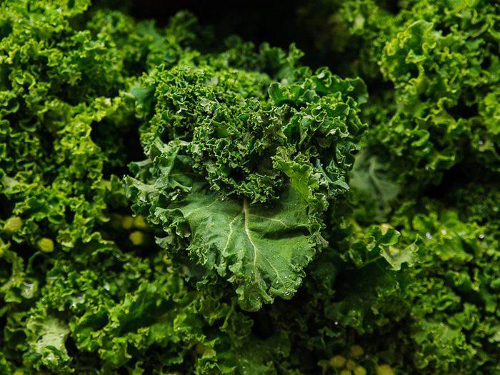 Le kale font partie des aliments riches en antioxydants.