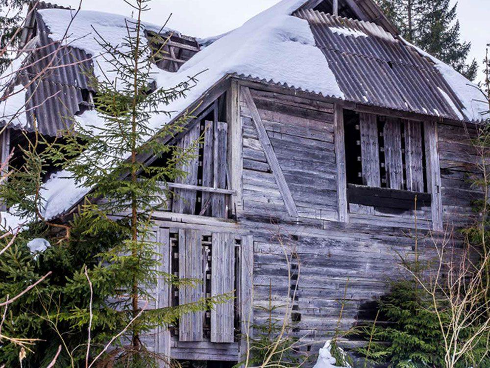 Là-bas, au fond des bois se trouve une maison abandonné qui aurait bien besoin d'être restaurée.