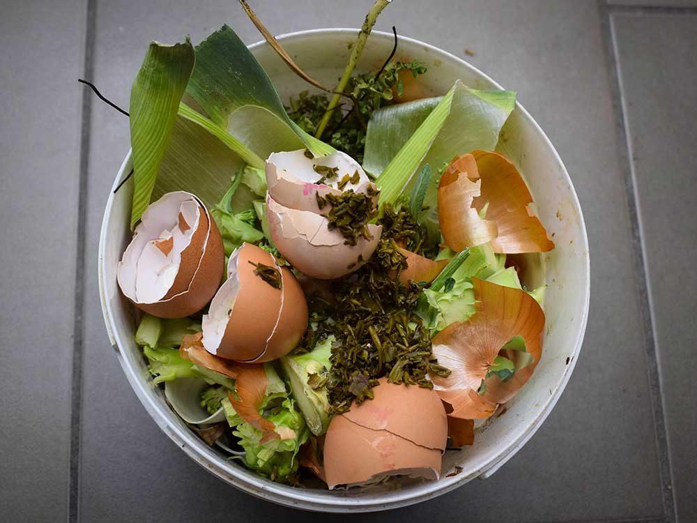 Conseils pour jardiner : faire un compost de fortune.