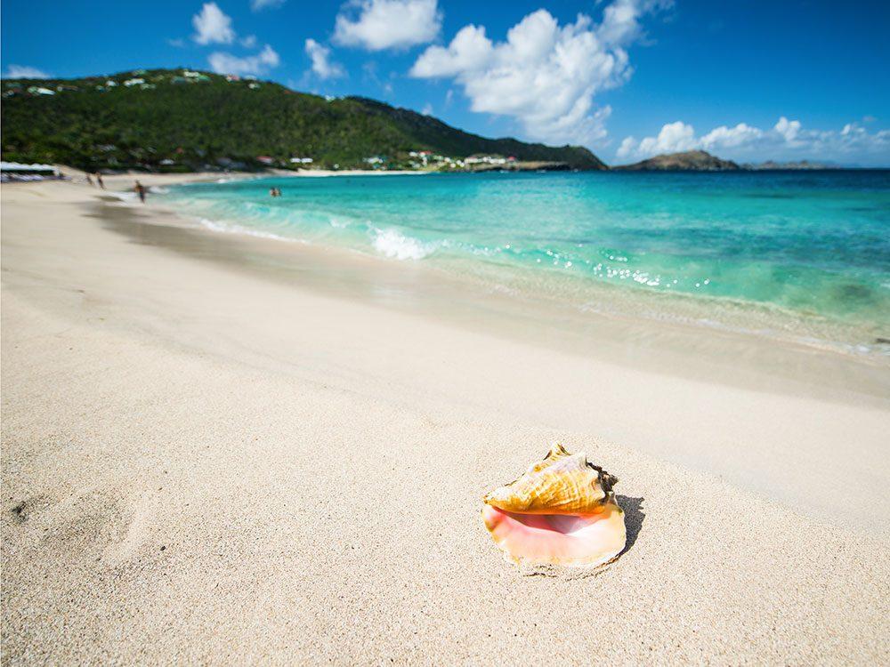 Shell Beach à Saint-Barthélémy est une des plus belles plages du monde.