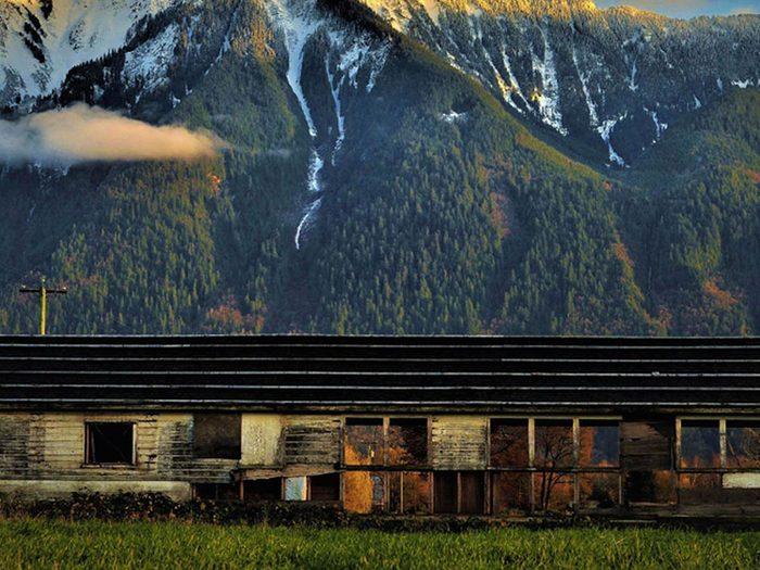 Quoi de mieux qu'une maison abandonnée à rénover en pleine nature?