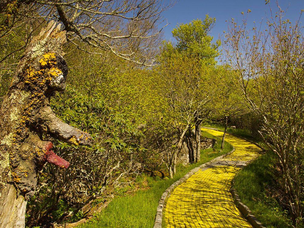 Le parc d'attractions Land of Oz en Caroline du Nord est l'un des lieux abandonnés dans le monde.