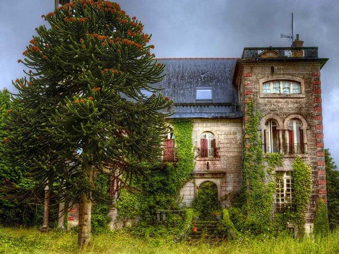 Cette maison abandonnée parmi un paysage éblouissant aurait bien besoin d'être restaurée.