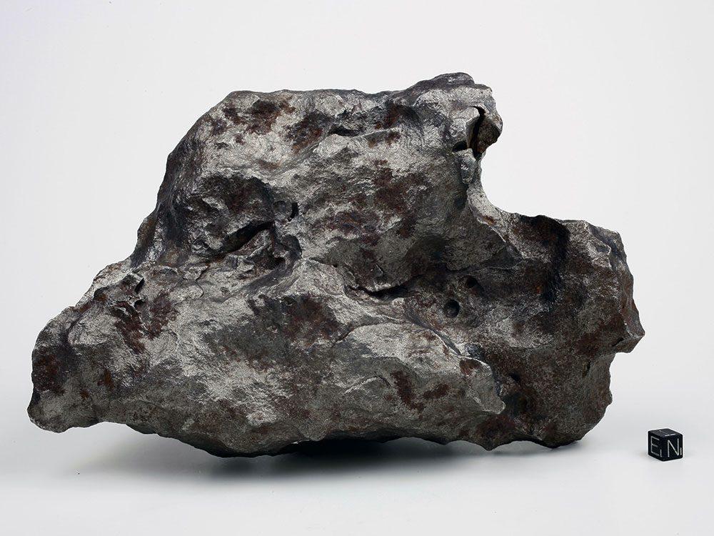 De près une météorite ressemble juste à une pierre.