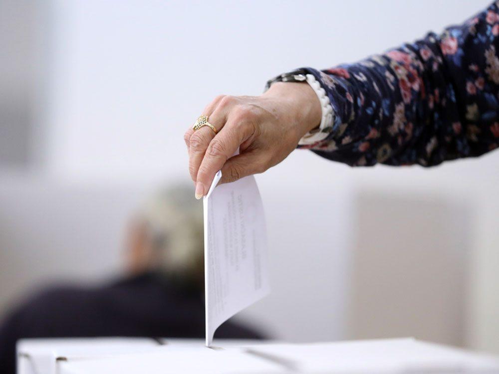 Survivre à une période électorale