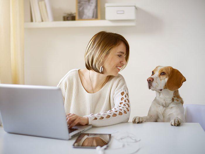 Si ça peut vous aider à adopter, sachez que tous les vieux chiens ne sont pas asociaux.