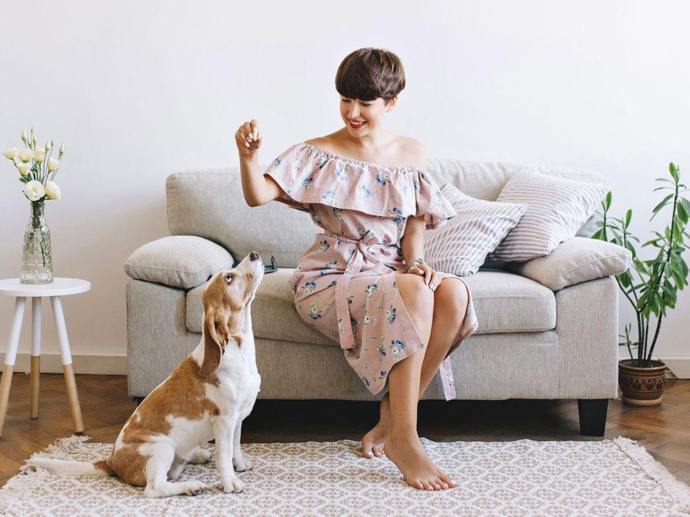 Les vieux chiens savent obéir, alors aucune raison de ne pas en adopter!
