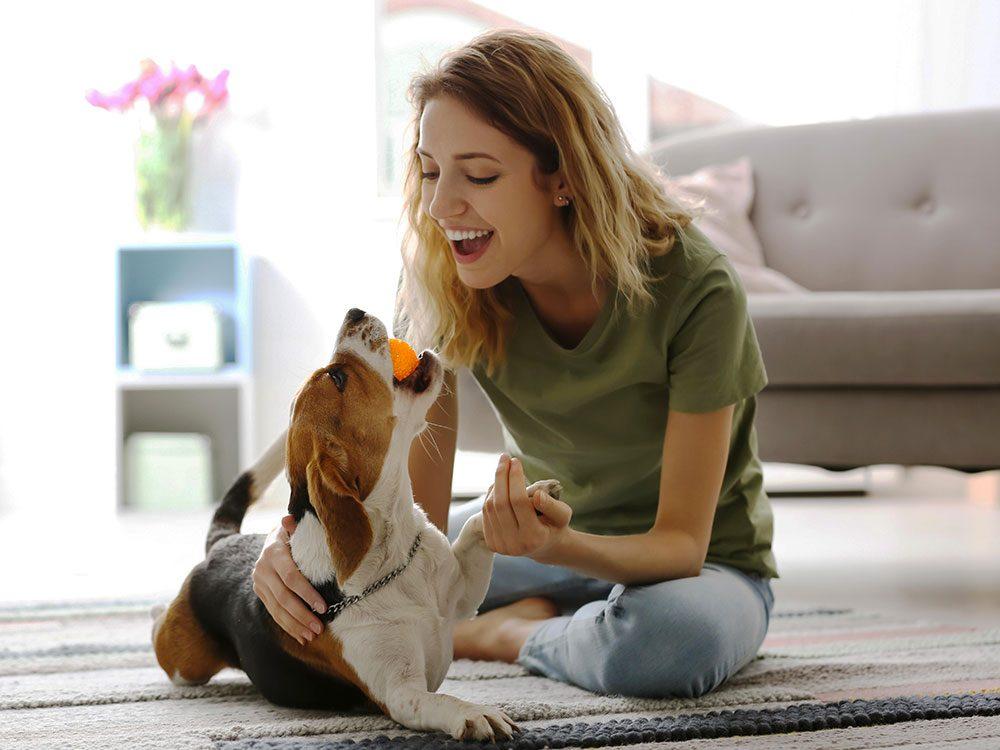 Adopter un vieux chien: mais les chiots sont adorables!