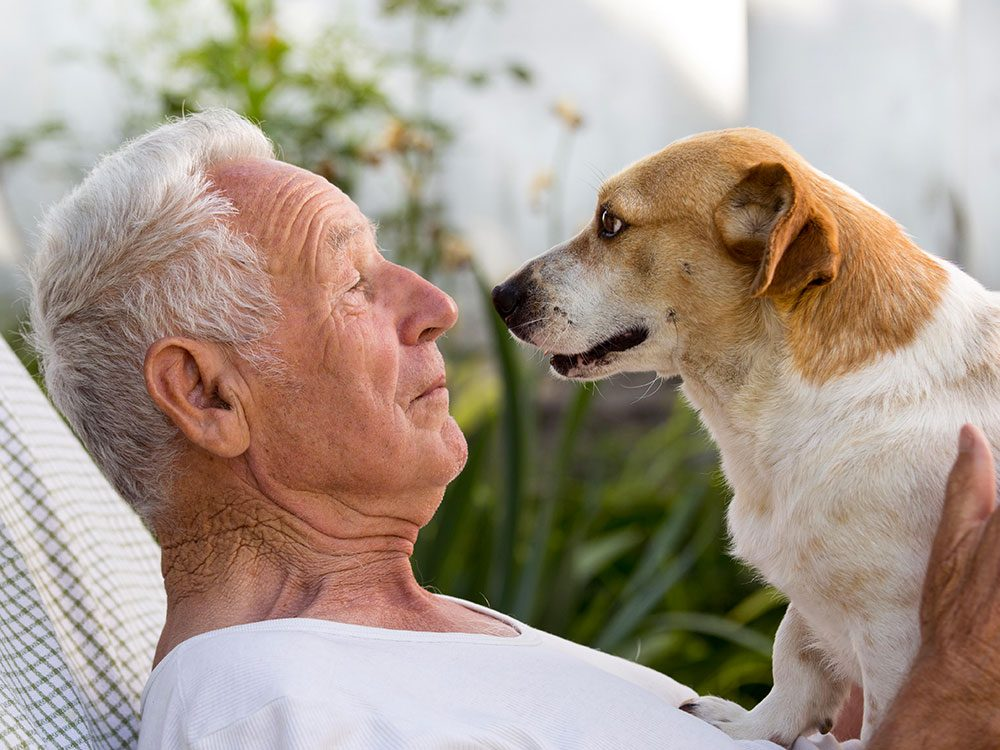 Quand vous adoptez un chien, vous avez besoin de lui autant qu'il a besoin de vous.