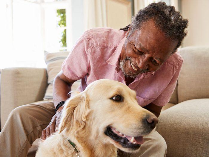 Quand vous adoptez un chien, il n'y a pas que vous, il y a lui aussi.