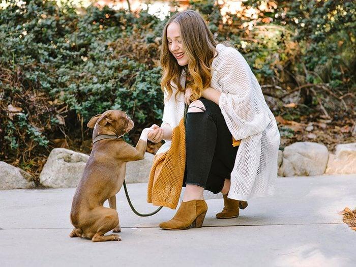 Adoption: on peut apprendre à un vieux chien de nouveaux tours.
