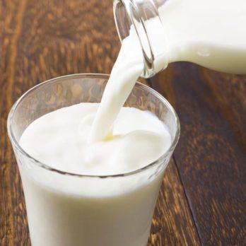 11 aliments qui contiennent plus de calcium qu'un verre de lait