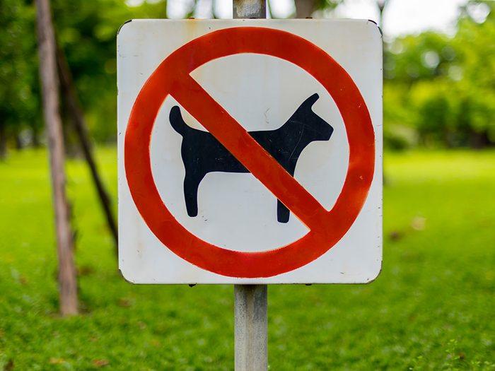 Ne pas respecter les avis «Chiens interdits» fait partie des mauvaises habitudes que les propriétaires de chiens doivent corriger.