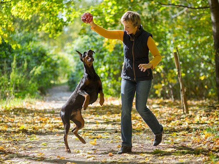 Permettre à son chien de sauter sur les gens ne doit pas être autorisé par les propriétaires de chiens.