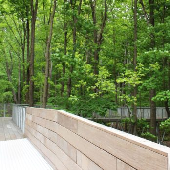 Balados pour découvrir les parcs-nature de Montréal