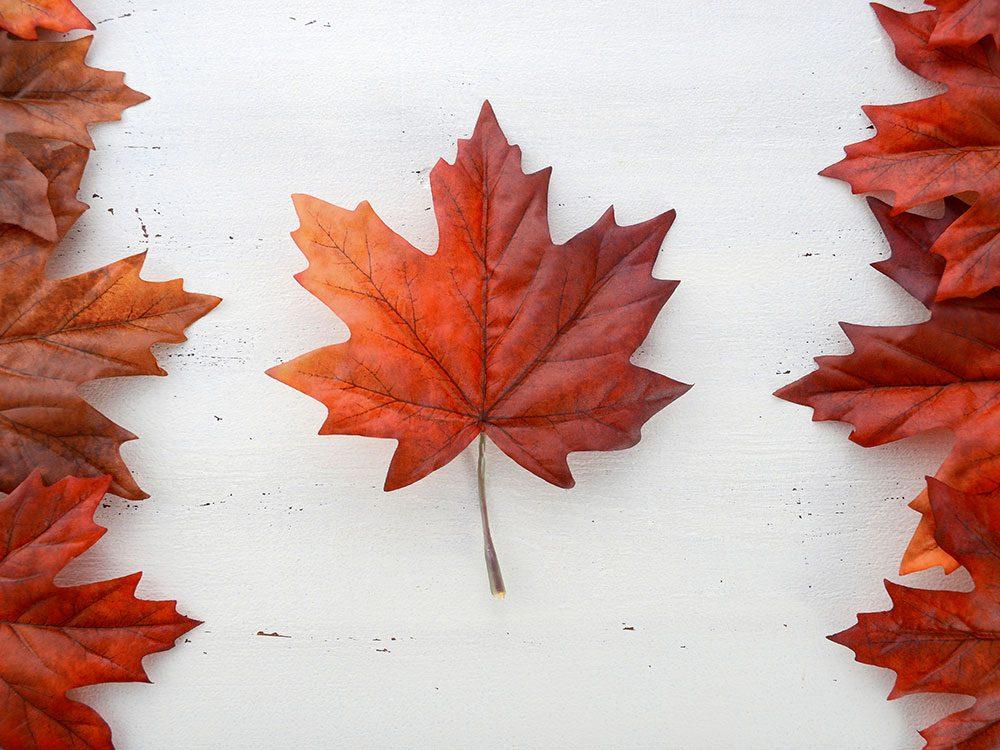 Le Canada est particulièrement exposé à un grand nombre de changements et de catastrophes climatiques.