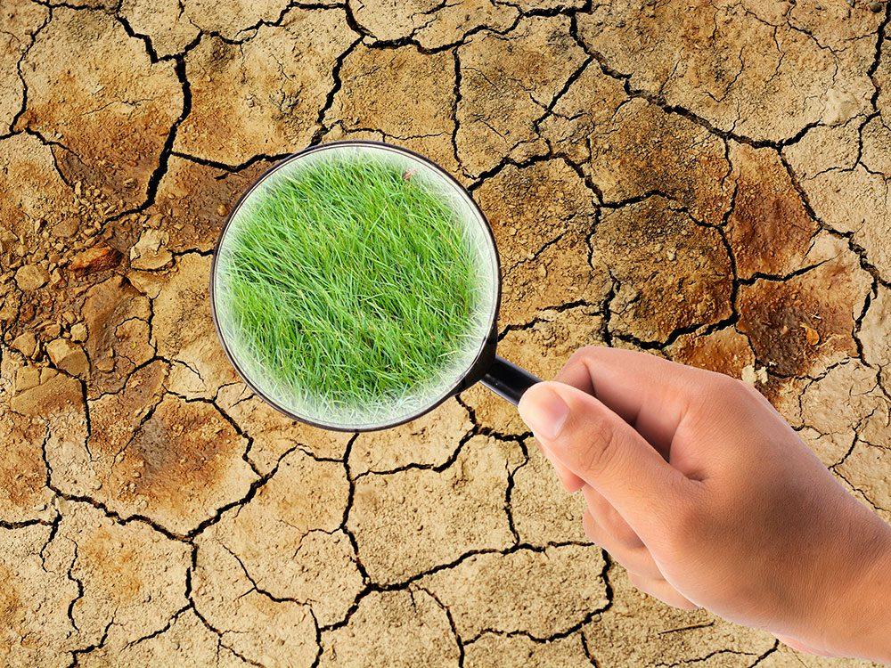 La désinformation et les mensonges sont régulièrement utilisés pour miner la science du changement climatique.