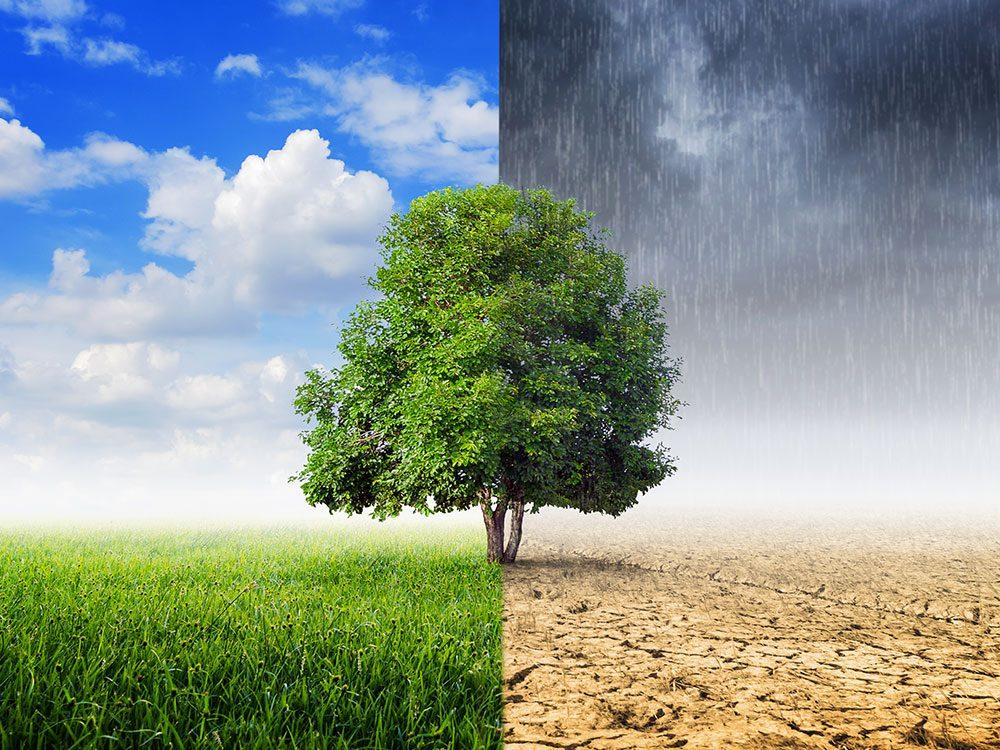 Comment les changements climatiques affectent votre santé